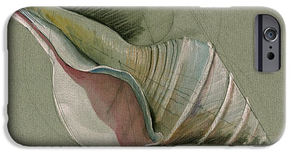 Architects Paintings iPhone Cases - Seashell art painting iPhone Case by Juan  Bosco
