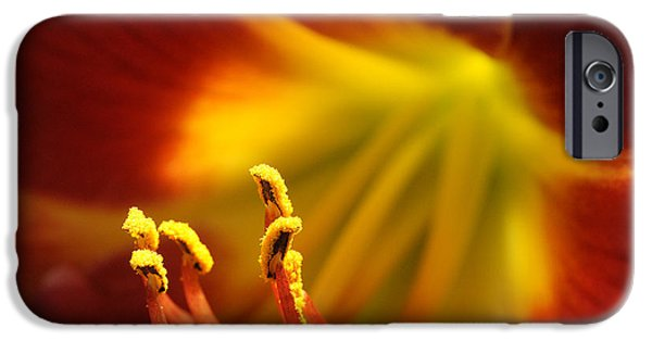 Floral Photographs iPhone Cases - Sextet iPhone Case by Bill Morgenstern