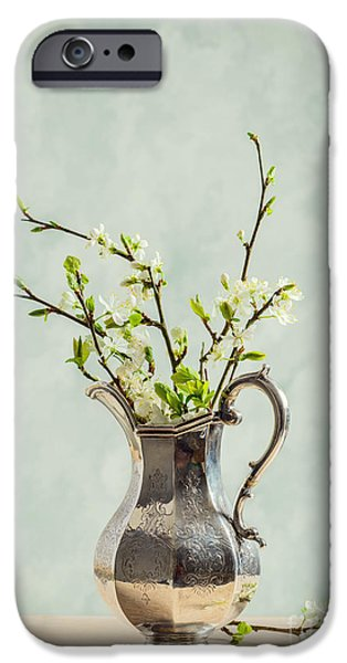 Antiques iPhone Cases - Spring Blossom iPhone Case by Amanda And Christopher Elwell