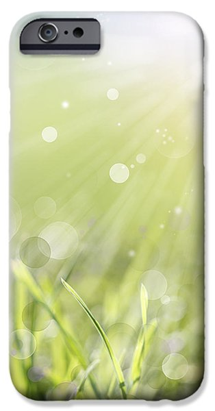 Flora iPhone Cases - Springlight iPhone Case by Les Cunliffe