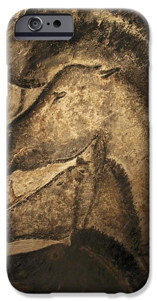 Ancient iPhone Cases - Stone-age Cave Paintings, Chauvet, France iPhone Case by Javier Truebamsf
