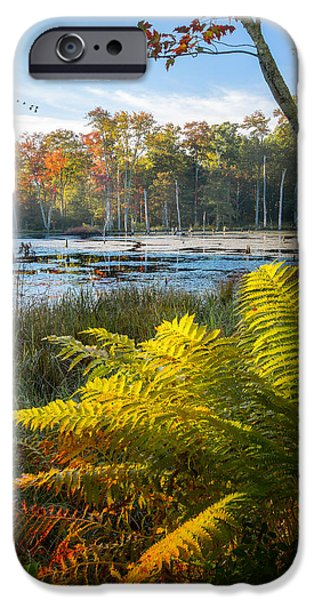 Fall In New England iPhone Cases - Sunrise in the Swamp iPhone Case by Bill Wakeley