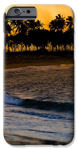 Palm Tree iPhone Cases - Sunset at the Beach iPhone Case by Sebastian Musial