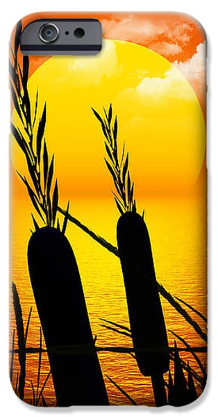 Sunset Lake iPhone Case by Robert Orinski