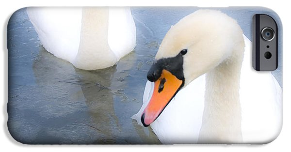 Swans... iPhone Cases - Swans iPhone Case by Svetlana Sewell