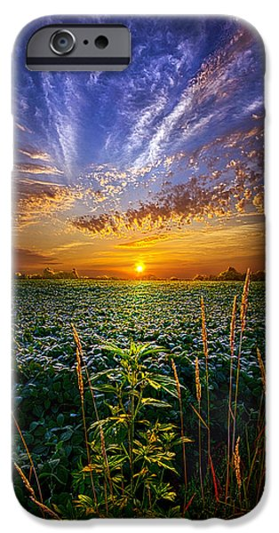 Crops Photographs iPhone Cases - Sweet Surrender iPhone Case by Phil Koch