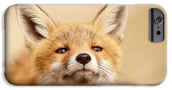 Fox Kit iPhone Cases - That Foxy Face iPhone Case by Roeselien Raimond