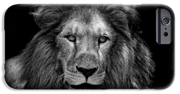 Large Cats iPhone Cases - The Epitome of Male iPhone Case by Ligiera