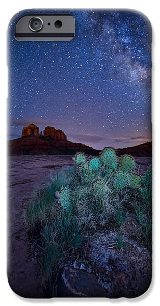 Cathedral Rock Pyrography iPhone Cases - The Impractical Cactus iPhone Case by Larry Pollock