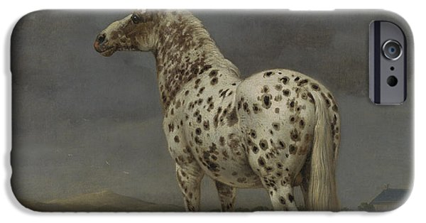 Rear View iPhone Cases - The Piebald Horse iPhone Case by Paulus Potter