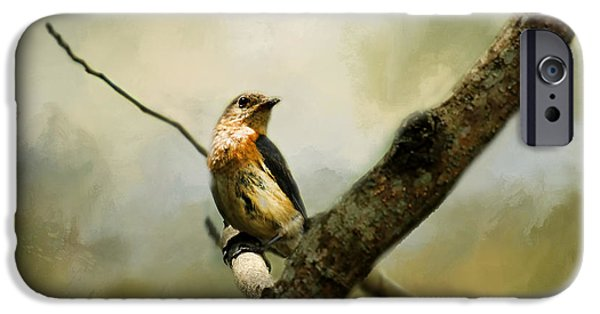 Fauna iPhone Cases - The Watcher iPhone Case by Darren Fisher