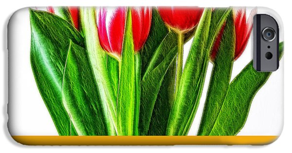 Crops iPhone Cases - Tulip 16 iPhone Case by Ingrid Smith-Johnsen