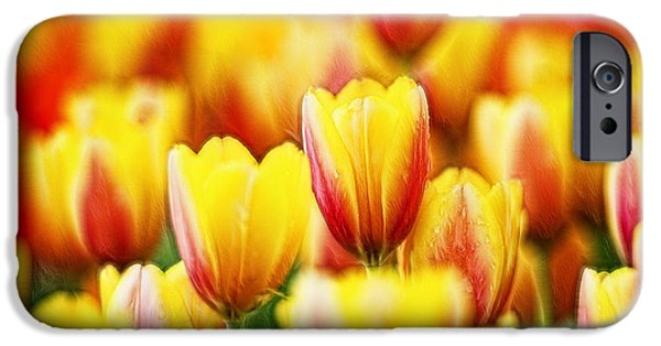 Crops iPhone Cases - Tulip 18 iPhone Case by Ingrid Smith-Johnsen