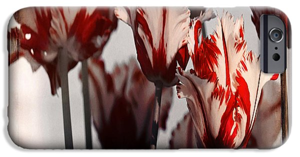 Crops iPhone Cases - Tulip 42 iPhone Case by Ingrid Smith-Johnsen