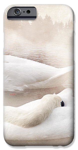 Two Swans iPhone Case by Svetlana Sewell
