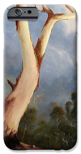Landscapes Reliefs iPhone Cases - Valley View iPhone Case by John Cocoris