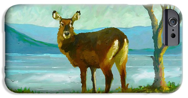 Pleasure iPhone Cases - Waterbuck iPhone Case by Anthony Mwangi