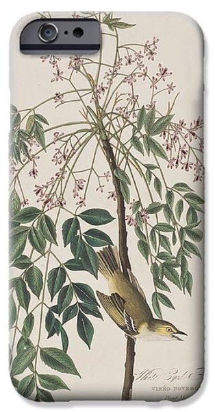 Botanical Drawings iPhone Cases - White-eyed Flycatcher iPhone Case by John James Audubon