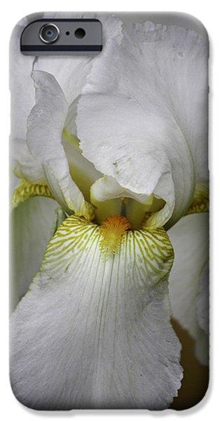 White Beard iPhone Cases - White Iris iPhone Case by Teresa Mucha