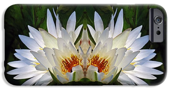 Nature Center Pond iPhone Cases - White Lotus Panorama iPhone Case by Daniel Unfried