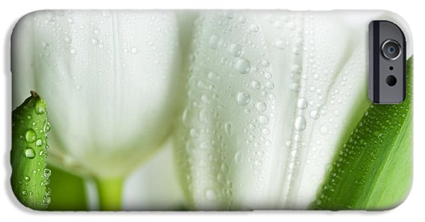 Bouquet iPhone Cases - White Tulips iPhone Case by Nailia Schwarz