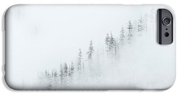 Fog Mist iPhone Cases - Winter Veil iPhone Case by Mike  Dawson