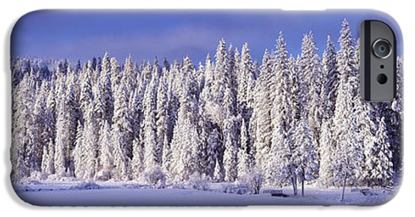 Snowy Day iPhone Cases - Winter Wawona Meadow Yosemite National iPhone Case by Panoramic Images