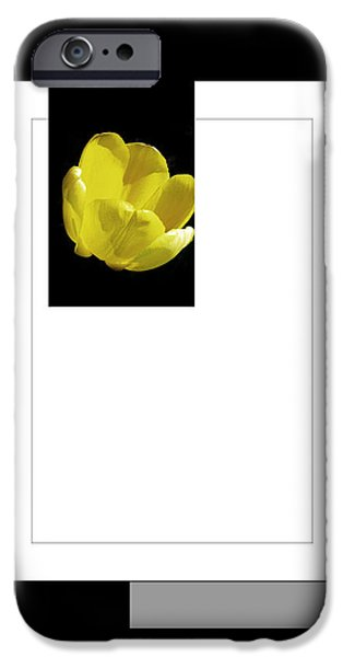 Abstract Forms iPhone Cases - Yellow Tulip 3 Of 3 iPhone Case by Tina M Wenger
