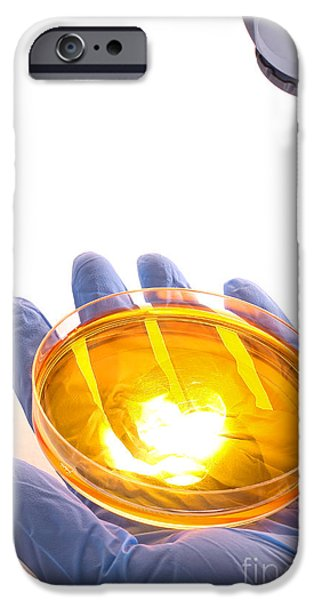 Bacteria iPhone Cases - Scientific Experiment in Science Research Lab iPhone Case by Olivier Le Queinec
