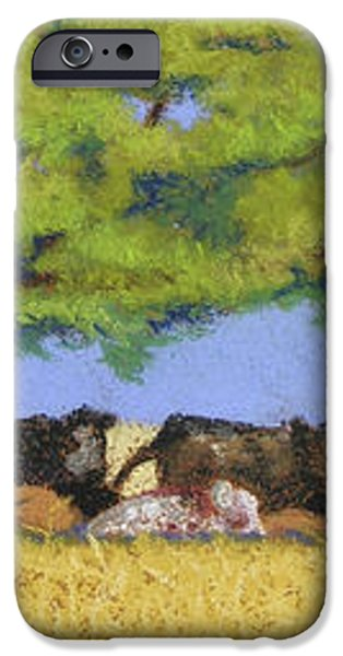 100 Degrees Plus iPhone Case by Tracy L Teeter