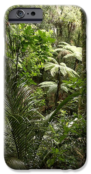 Raining iPhone Cases - Jungle iPhone Case by Les Cunliffe