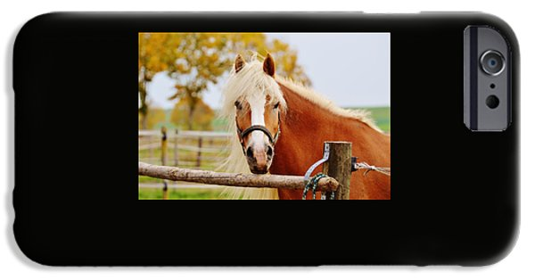 Bonding iPhone Cases - Horse iPhone Case by FL collection