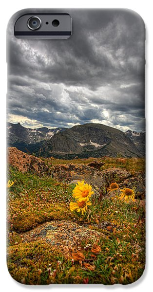 12000 Foot Flower iPhone Case by Peter Tellone