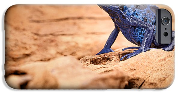 Frogs Photographs iPhone Cases - Poison dart frog iPhone Case by Dirk Ercken