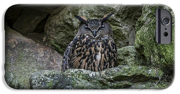 Ledge iPhone Cases - 150501p119 iPhone Case by Arterra Picture Library