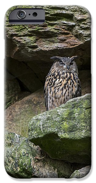 Ledge iPhone Cases - 150501p122 iPhone Case by Arterra Picture Library
