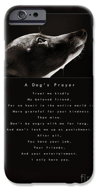 A Dog's Prayer iPhone Case by Angela Rath