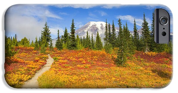 Mt iPhone Cases - Autumn Trail iPhone Case by Mike  Dawson