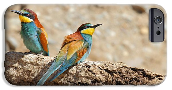 Couple Tapestries - Textiles iPhone Cases - Bee-eater iPhone Case by Marco Amenta