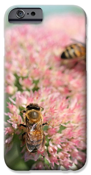 2 Bees iPhone Case by Angela Rath