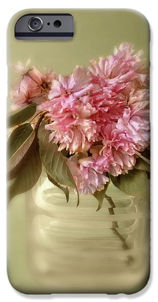 Cherry Blossoms iPhone Cases - Blossom iPhone Case by Jessica Jenney