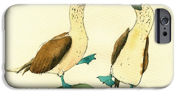 Birds iPhone Cases - Blue footed boobies iPhone Case by Juan  Bosco