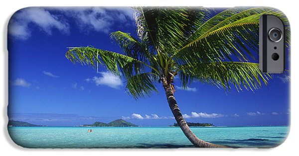 Recently Sold -  - Overhang iPhone Cases - Bora Bora, Palm Tree iPhone Case by Ron Dahlquist - Printscapes