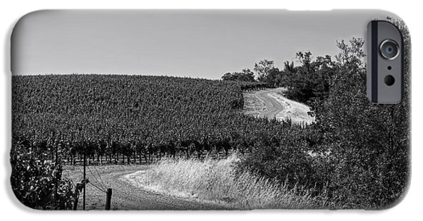 California Vineyard iPhone Cases - California Vineyard Trail iPhone Case by Mountain Dreams