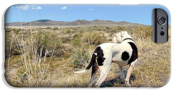 Dog In Landscape Photographs iPhone Cases - Christmas Valley iPhone Case by Maria Jansson