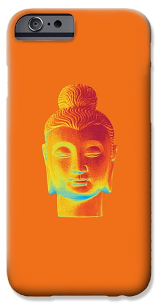 Asian Sculptures iPhone Cases - colorful Buddha - Gandhara iPhone Case by Terrell Kaucher