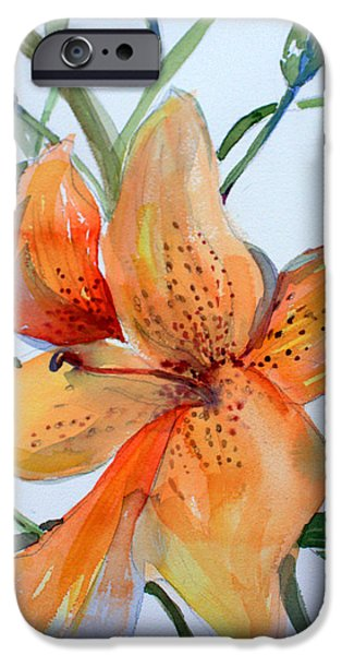 Botanical Drawings iPhone Cases - Day Lily iPhone Case by Mindy Newman