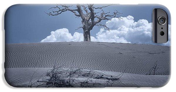 Eerie iPhone Cases - Dead Tree iPhone Case by Joana Kruse