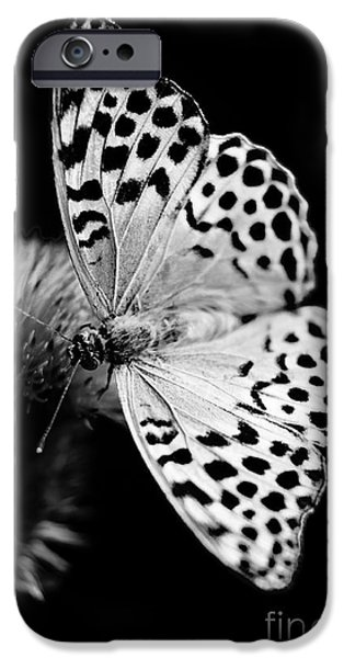 Buterfly iPhone Cases - Delicate iPhone Case by Gabriela Insuratelu