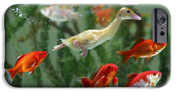 Domesticated Animals iPhone Cases - Duckling And Goldfish iPhone Case by Jane Burton